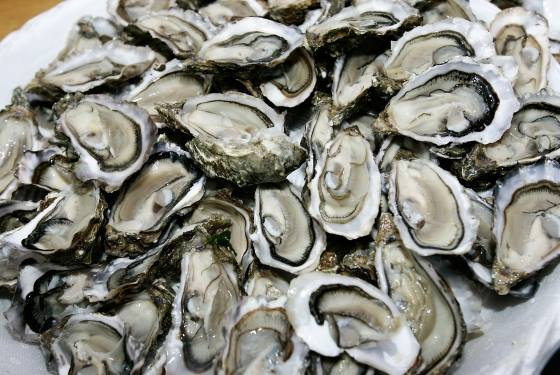 Flagship Brewing's Second Annual Oysterfest