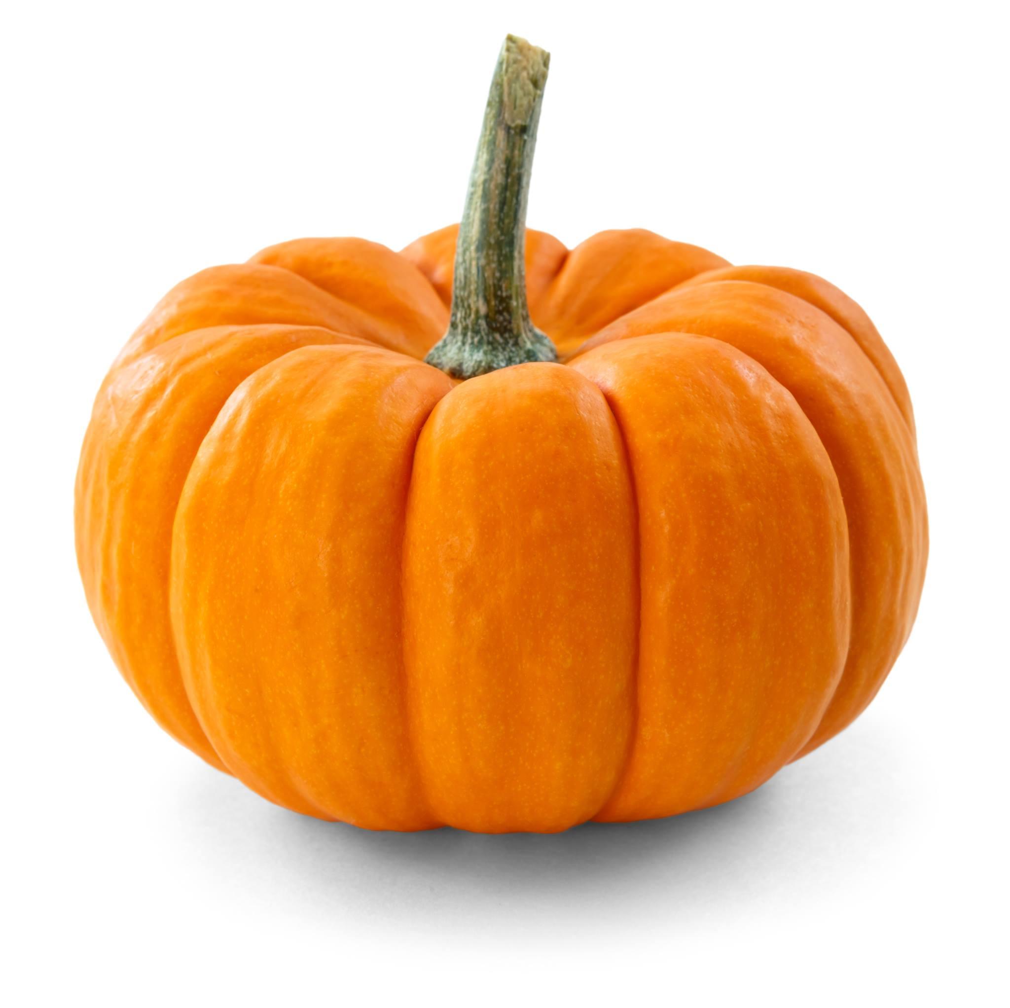 Great Pumpkin Showdown 2016